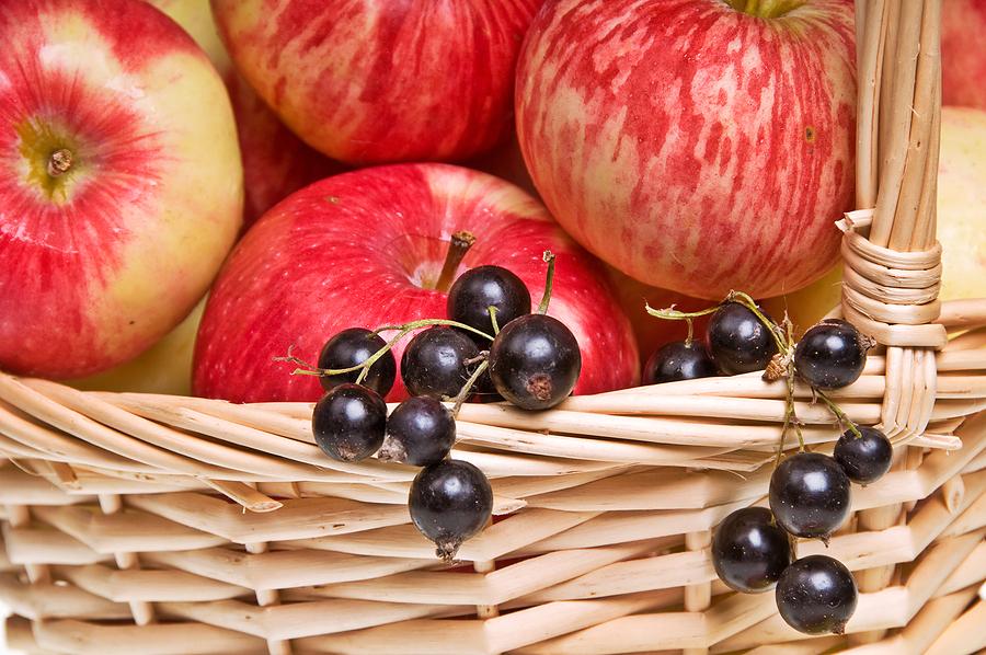 omena mustaherukka